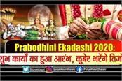 ekadashi upay