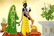 dev uthani ekadashi and tulsi vivah rules