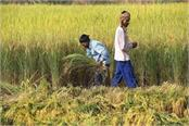 farmers will be able to move freely in their fields