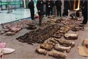 china  comprehensively  bans illegal wildlife trade