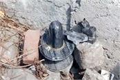 shoveling shivling and throwing it in the bushes