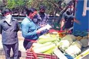 license of 5 vendors selling expensive vegetables and fruits