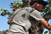 self serviceman providing better service to birds in samba