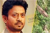 chandan roy sanyal pays tribute to irrfan khan friend at actor grave