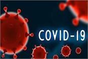 shimla 252 corona infected