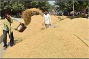 government has procured paddy worth rs 110934 lakh so far
