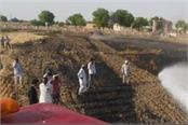 3 acres of wheat burnt to ashes due to fire in ellenabad
