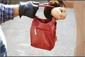 bike riding miscreants absconded by snatching the woman s purse