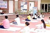 gna university phagwara international yoga day