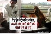 delhi metro appeals avoid giving food and drink to monkeys