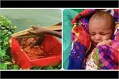 21 day  ganga  found flowing in a wooden box in mokshadayini river