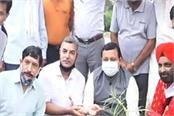 himotkarsh and press club planted saplings in badheda s golden garden