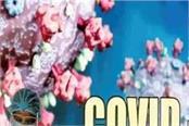 firozpur corona update