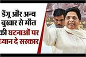 mayawati s request government should pay attention to the