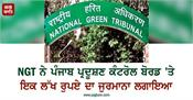 ngt imposes fine of rs 1 lakh on punjab pollution control board
