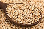 approved farmers to seed wheat from happy cedar