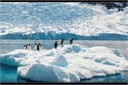7 1 magnitude earthquake near antarctica no tsunami warning