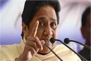 of the record mayawati will make regional alliances to win 100 lok sabha seats