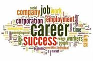 careers fields commerce students bcom hons