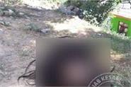 schoolgirl from head hair pulling teacher may fall on gaaj