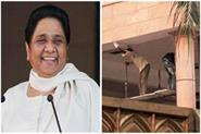 mayawati will shift in 9 mall avenue new bungalow