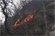 dm releases statement on fire in forests