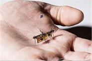 researchers including 3 indians build worlds 1st wireless insect sized drone