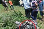 jawali in crashes indian aircraft mig 21