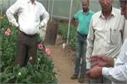 una farmer became an example by earning millions from floriculture