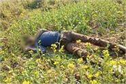 extends sensation to found deadbody in fields