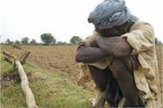 5 97 lakh farmers still owe 371 25 crores in haryana