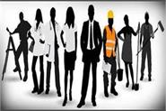 now youth will get employment opportunities