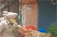 kapurthala phagwara sho navdeep singh vegitable vender