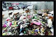 garbage dump in katra safaikarmi on hartaal