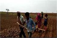 such is the condition of the farmer in shiva raj