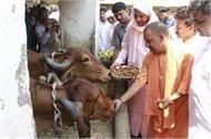 cm yogi reached varanasi