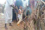 martyr kundan of saharsa gives last rite to 6 year old son