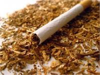 भारत में सबसे ज्यादा नैतिक तम्बाकू नियंत्रण के प्रयास