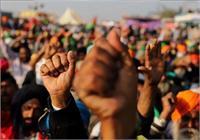 किसानों ने भाजपा प्रदेशाध्यक्ष धनखड़ के काफिले को दिखाए काले झंडे