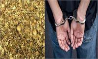 पुलिस ने कार्रवाई के दौरान युवक किया गिरफ्तार, 17 किलो डोडापोस्त किया बरामद
