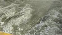 महिला ने दो बच्चों समेत यमुना नहर में लगाई छलांग, लोगों ने बचाया, बच्चे अभी भी लापता