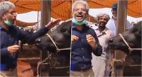 क्या आपने सुना भैंस का इंटरव्यू, पाकिस्तानी रिपोर्टर के इस कारनामे को देख लोटपोट हुए लोग