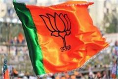 assembly elections 2019 members of mps will not get bjp ticket