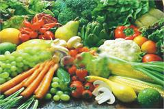 vegetable cluster will be built in each district of punjab