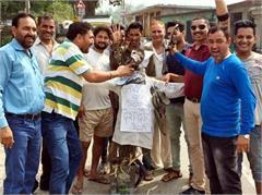 surjical strike arvind kejriwal effgiy burn