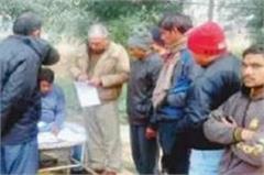 palwal  tree  crash  death
