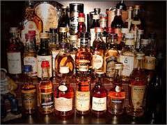 gohar janjehali alcohol