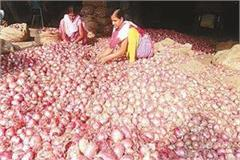 increased prices of expensive onions in the kitchen