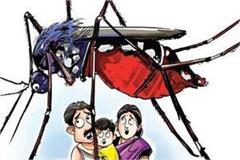 dengue sufferers made pain  the hospital is not in the