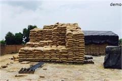 2 trucks of wheat stolen from markfed warehouse